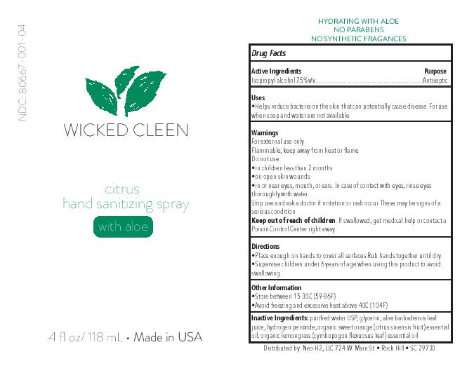 Wicked Cleen 4 oz