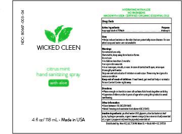 Wicked Cleen Citrus Mint Hand Sanitizer- 4oz bottle