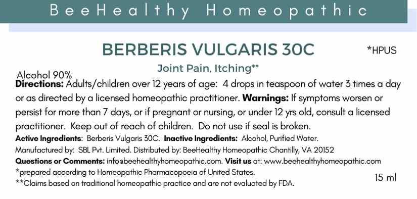 berberis vulgaris.jpg