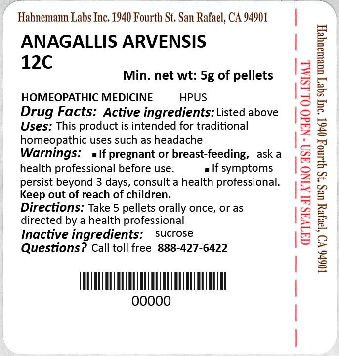 Anagallis Arvensis 12C 5g