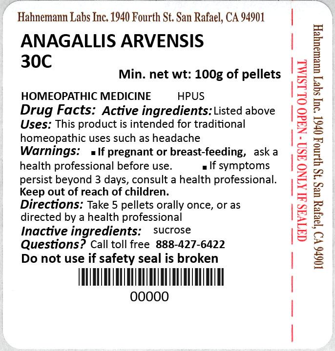 Anagallis Arvensis 30C 100g
