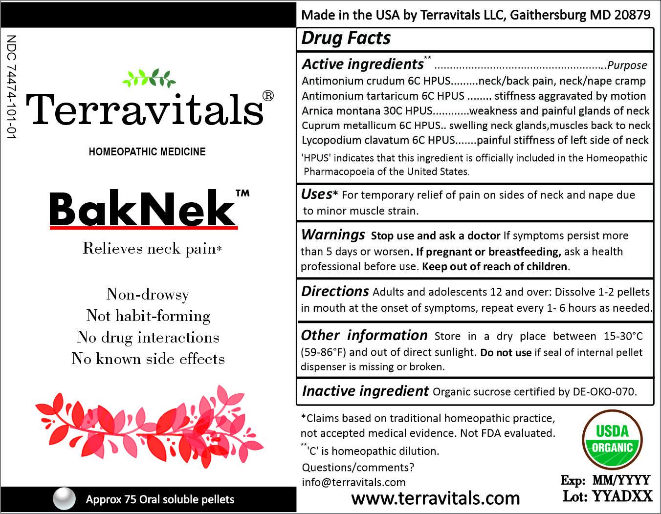 External label BakNek
