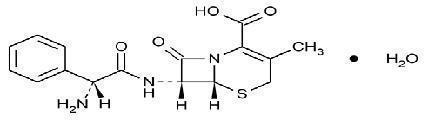 Cephalexin structure