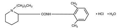 Bupivacaine Hydrocloride