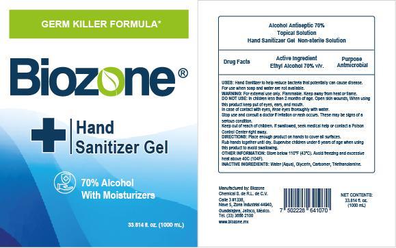 HAND SANITIZER BIOZONE 1000ml.jpg