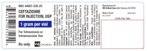 Ceftazidime 1 gram vial label