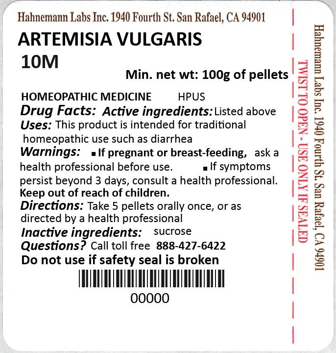 Artemisia Vulgaris 10M 100g