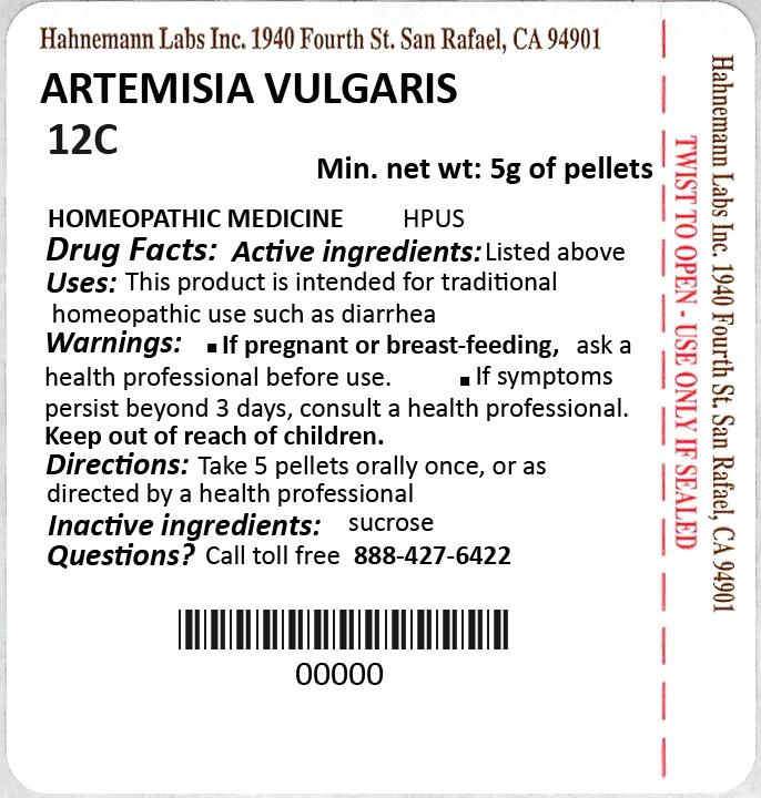 Artemisia Vulgaris 12C 5g