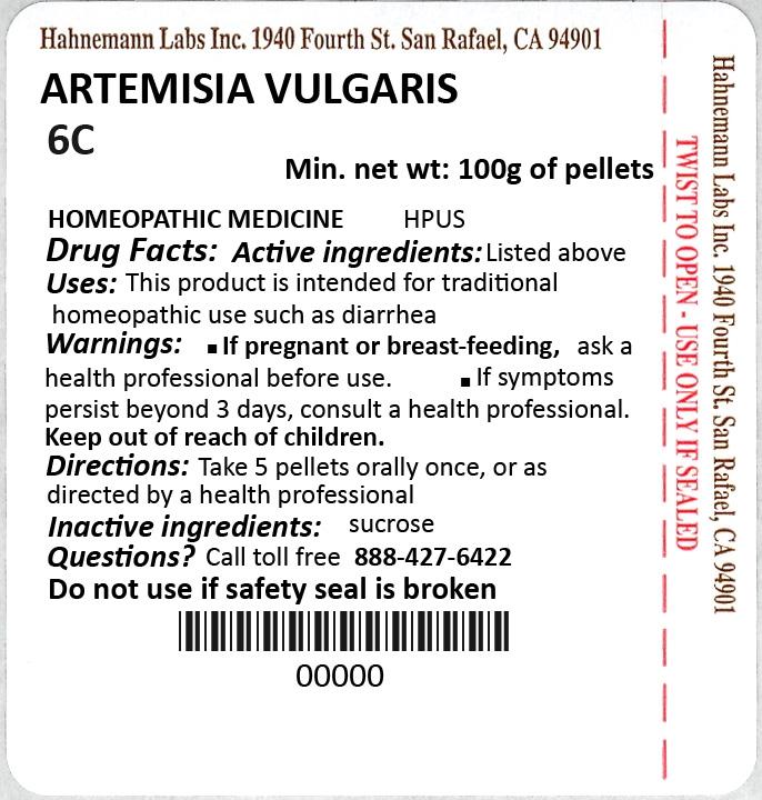 Artemisia Vulgaris 6C 100g