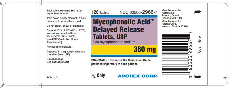 mycophenolate-360mg