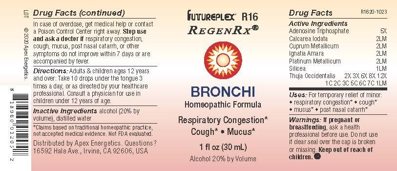 R16 Bronchi 20201023 label.jpg