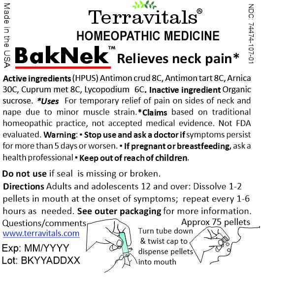Internal Label BakNek
