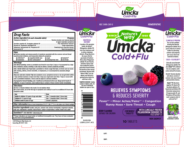 12347_Umcka CF Berry 10 chew_A01.jpg