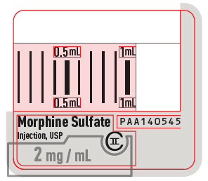 PRINCIPAL DISPLAY PANEL - 2 mg/mL Syringe Luer Lock Label