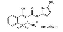 Diagram of empirical formulation of meloxicam