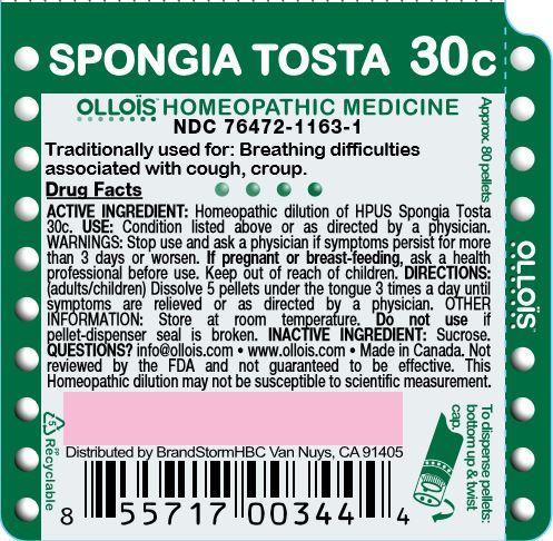 Spongia Tosta 30c