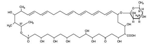 nystatin chemical structure