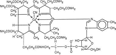 Cyanocobalamin Structural Formula