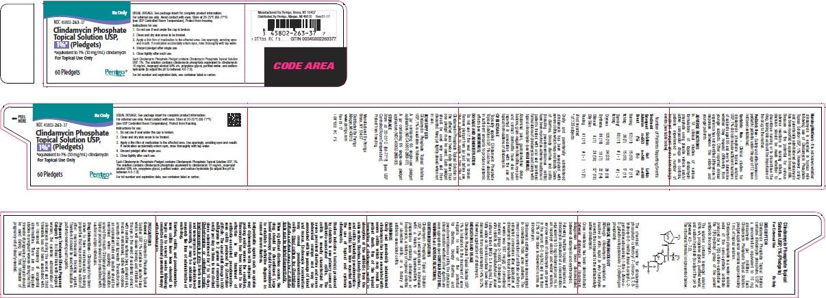 0T9RC-clindamycin-phosphate-topical-solution.jpg