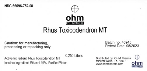 Rhus Toxicodendron MT
