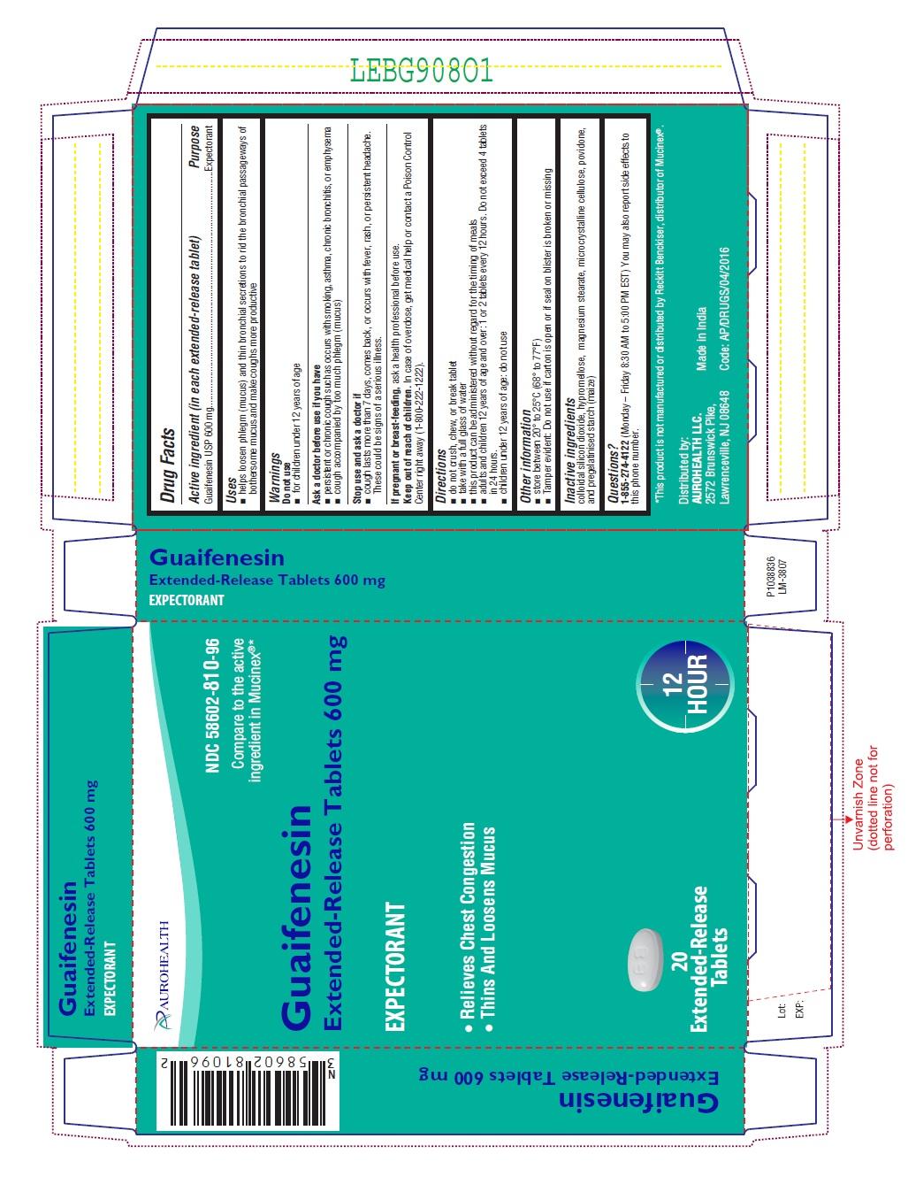 PACKAGE LABEL-PRINCIPAL DISPLAY PANEL - 600 mg Blister Carton (20 (1 x 20) Tablets)
