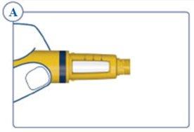 Illustration of needle components.
