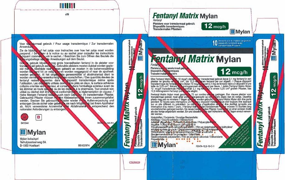 12 microgram/hour Carton Label - Belgium