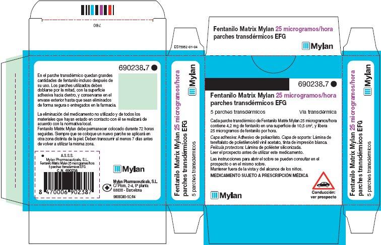 25 microgram/hour Carton Label - Spain