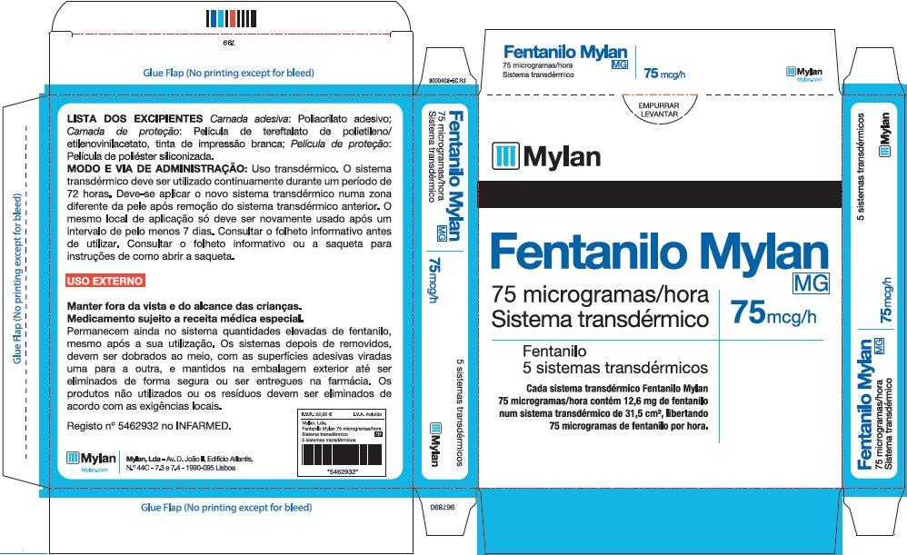 75 microgram/hour Carton Label - Portugal