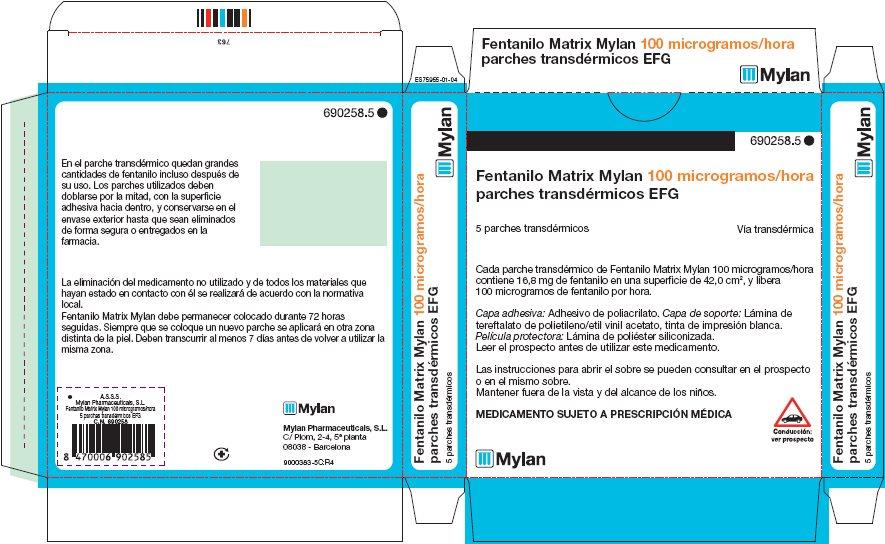 100 microgram/hour Carton Label - Spain