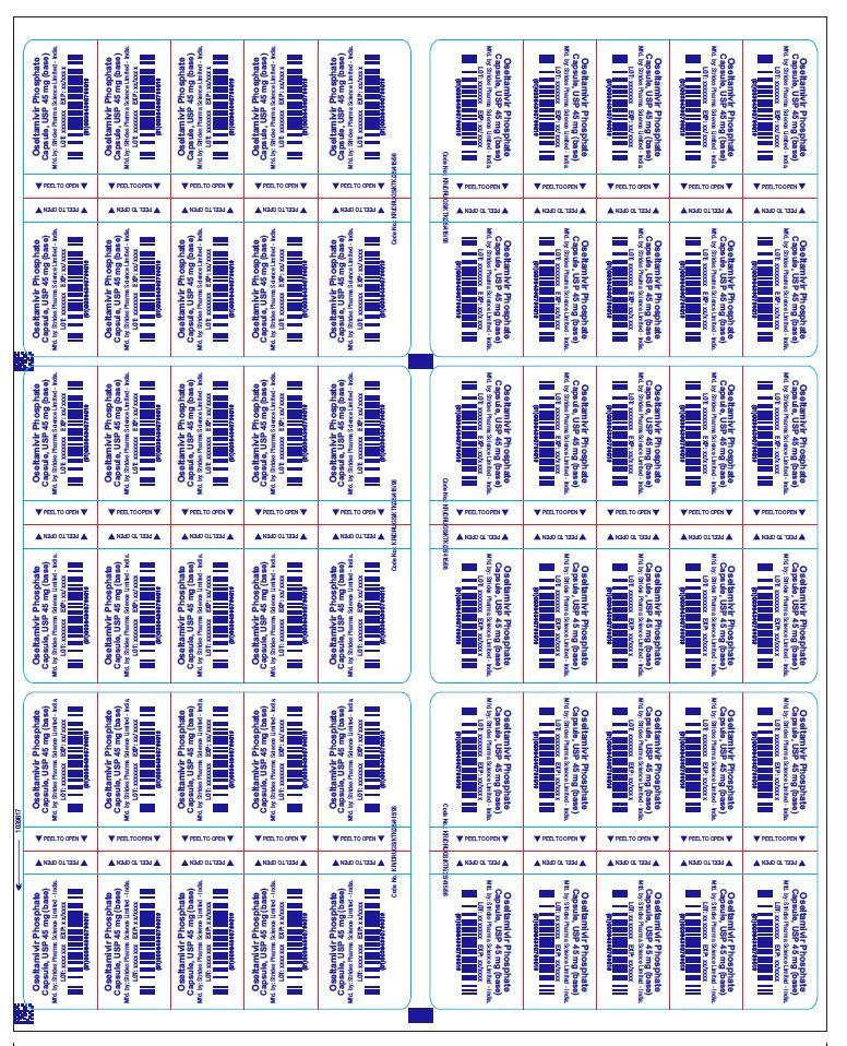 PRINCIPAL DISPLAY PANEL - 45 mg foil