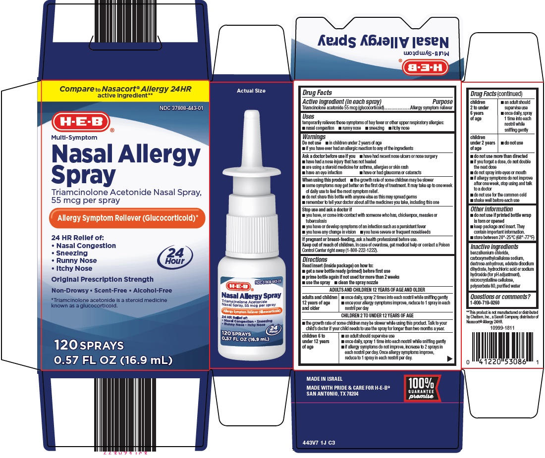 nasal-allergy-spray-image