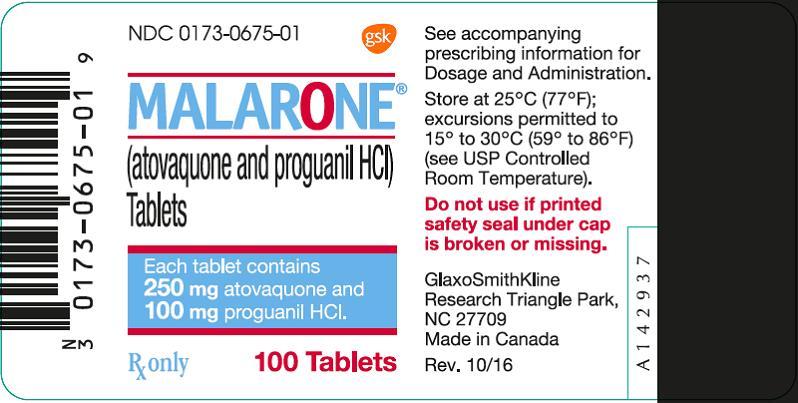 Malarone Adult 100 count label