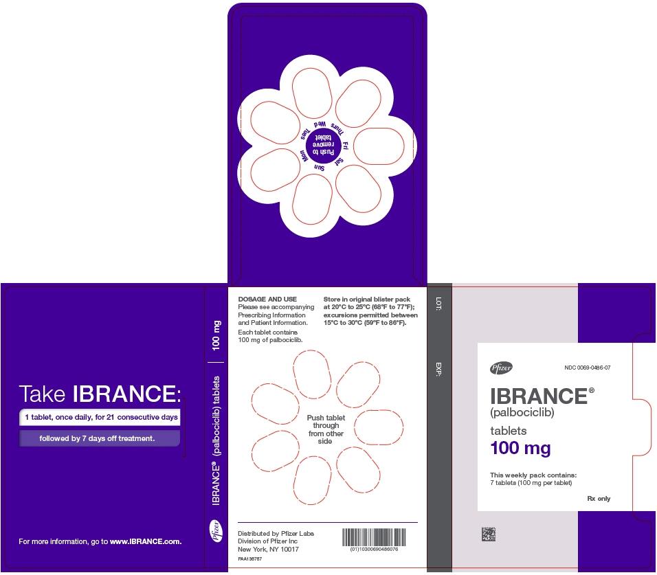 PRINCIPAL DISPLAY PANEL - 100 mg Tablet Dose Pack