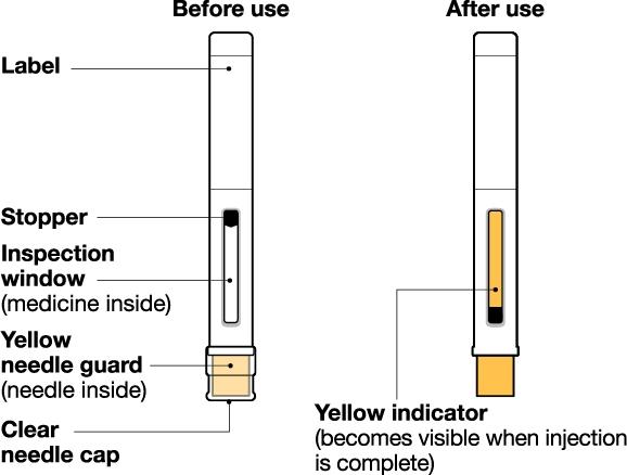Autoinjector IFU Figure 1